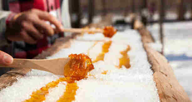 Why You Should Visit the Bronte Creek Maple Syrup Festival This Month!